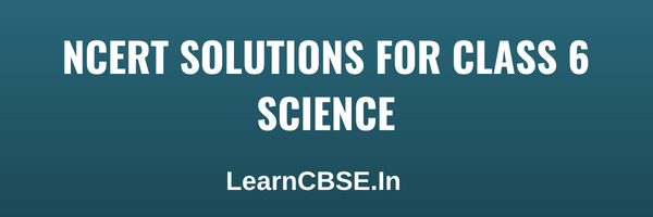 NCERT Solutions for Class 6 Science (Updated for 2019-20 Exams)