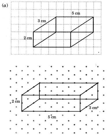 NCERT Solutions for Class 7 Maths Chapter 15 Visualising Solid Shapes Ex 15.2 13