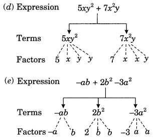 NCERT Solutions for Class 7 Maths Chapter 12 Algebraic Expressions 2