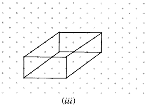 NCERT Solutions for Class 7 Maths Chapter 15 Visualising Solid Shapes Ex 15.2 8