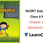 NCERT Solutions for Class 6 Maths Chapter 4 Basic Geometrical Ideas