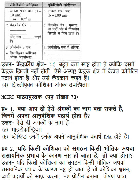 NCERT Solutions for Class 9 Science Chapter 5 The Fundamental Unit of Life Hindi Medium 3