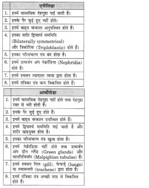 NCERT Solutions for Class 9 Science Chapter 7 Diversity in Living Organisms Hindi Medium 7