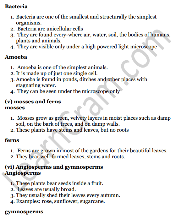 Selina Concise Biology Class 7 ICSE Solutions Chapter 2 Classification of Plants 4