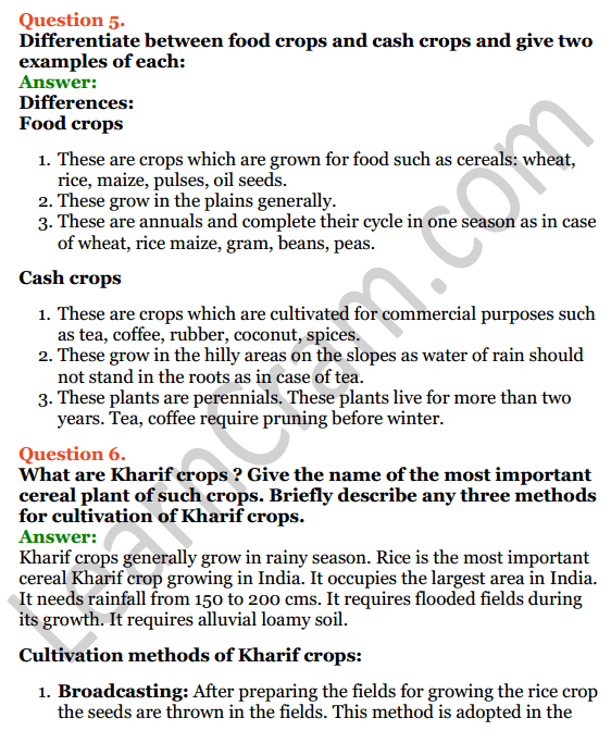 Selina Concise Biology Class 8 ICSE Solutions Chapter 9 Food Production 8