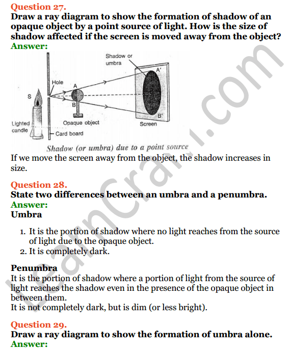 Selina Concise Physics Class 6 ICSE Solutions 5 Light 13