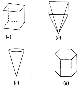 ML Aggarwal Class 8 Solutions for ICSE Maths Chapter 17 Visualising Solid Shapes Objective Type Questions 10