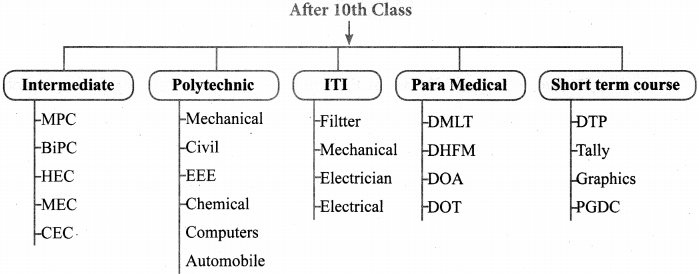 Tamilnadu Board Class 10 English Pamphlet Creation 1