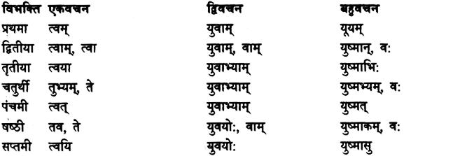Shabd Roop - शब्द रूप, Sanskrit Shabd Roop 8