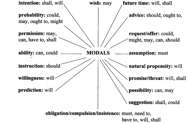 Modals Exercises for Class 10