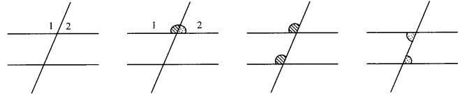 Maharashtra Board Class 9 Maths Solutions Chapter 2 Parallel Lines Problem Set 2 11