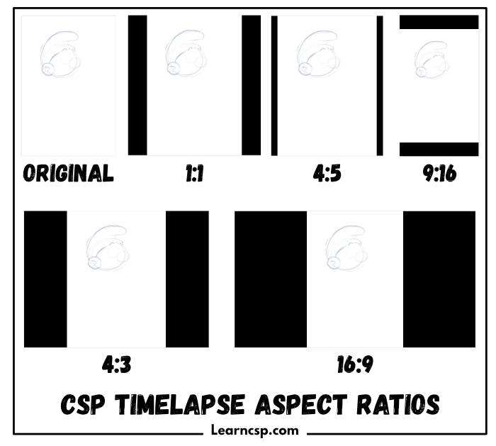 Timelapse Aspect Ratio Guide comparing the six export options from CSP