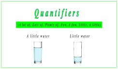 Quantifiers: a lot of, lots of, plenty of, few, a few, little, a little