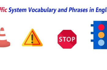 Traffic System Vocabulary and Phrases in English