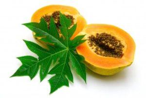papaya-fruit5