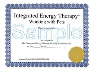 Pets Certificate lower res - with watermark