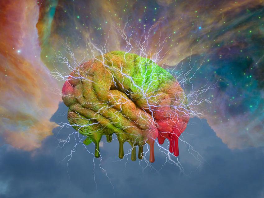 lsd effects brain