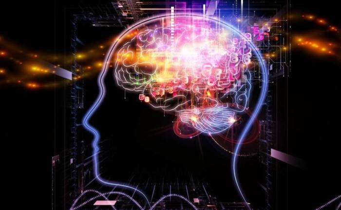maximize your brain power