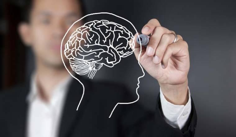 brain power success