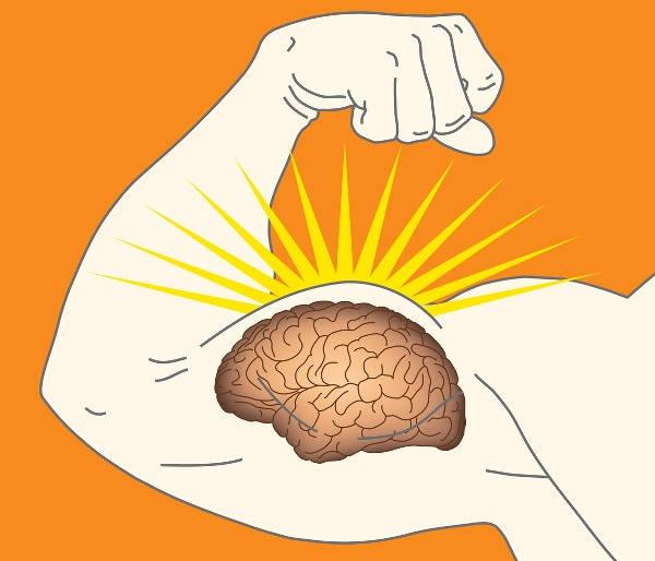 maintain muscles brain