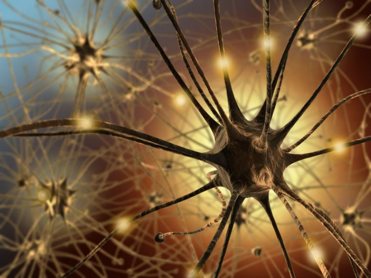 Neurons Constantly Rewrite their DNA