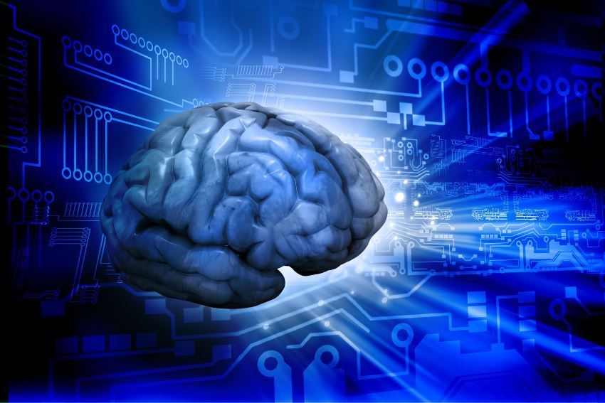 bionic brain memory cells