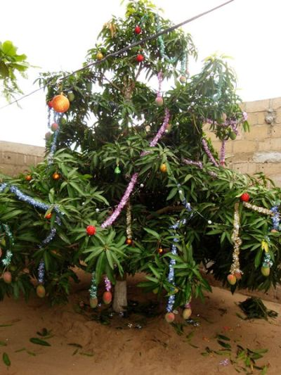 christmas traditions india