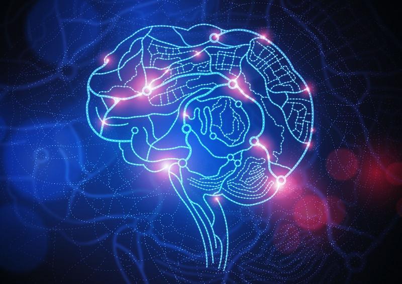 conscious perception
