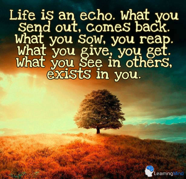 Life is an echo. What you send out comes back. What you sow, you reap. What you give, you get. What you see in others, exists in you.