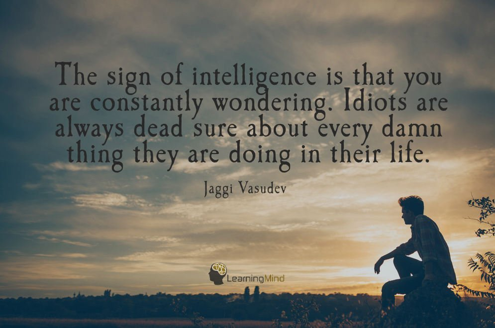 The sign of intelligence is that you are constantly wondering. Idiots are always dead sure about every damn thing they are doing in their life