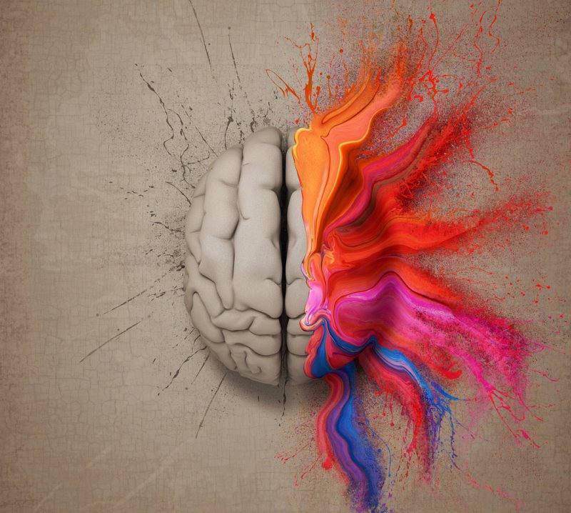 Left and Right Brain: Which Hemisphere Dominates You and How to Balance Them Left-and-right-brain