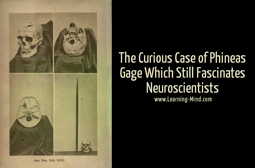 phineas gage case
