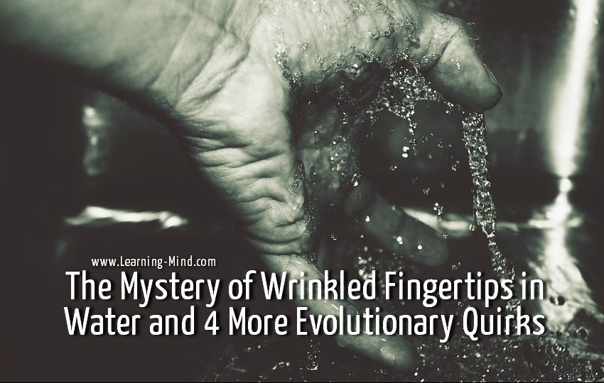 Wrinkled Fingertips in Water