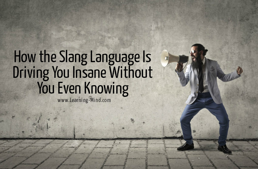 slang language insane