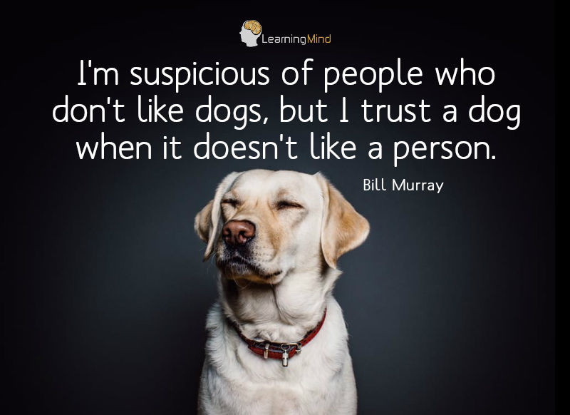 I'm suspicious of people who don't like dogs