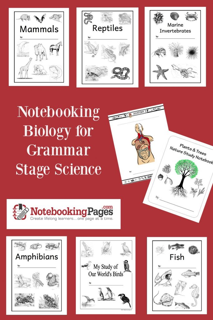 Notebooking Biology for the Grammar Stage