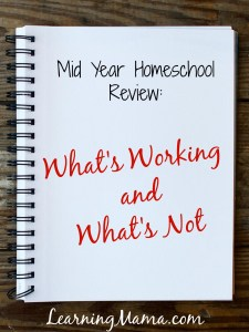 Why You Need a Mid Year Homeschool Review
