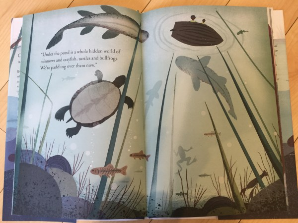 Using picture books to inspire nature study - Over and Under the Pond {Book Review}