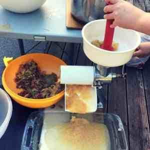 Canning Applesauce, Homemade Applesauce, Guide to Making Applesauce, How to make applesauce