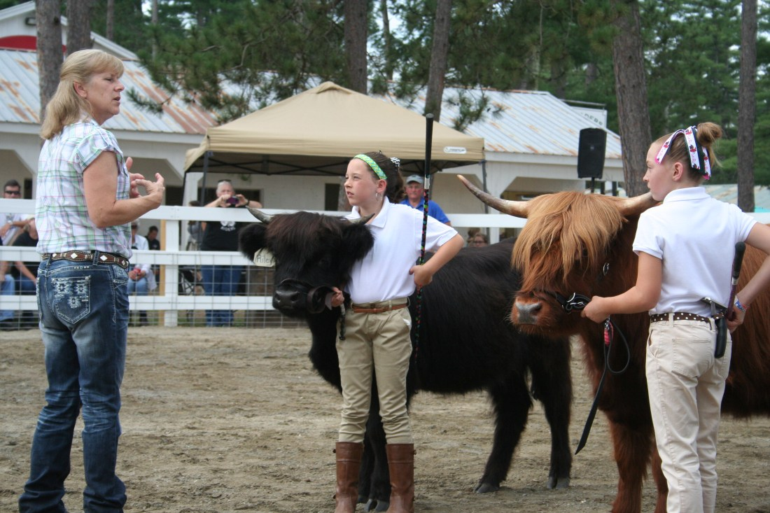 Highland Riders 4-H at the Hopkinton Fair