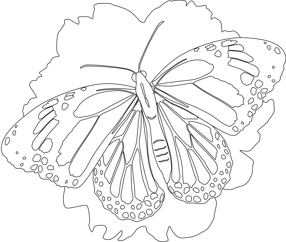 Kid Activity Pages Printables