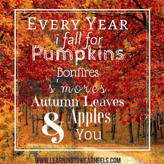 Every year I fall for pumpkins bonfires smores autumn leaveshellip