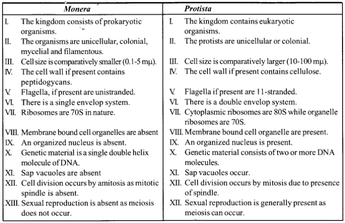 NCERT Solutions for Class 11 Biology Chapter 2 Biological Classification 4
