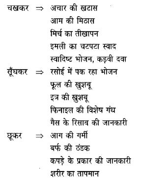 NCERT Solutions for Class 6 Hindi Vasant Chapter 11 जो देखकर भी नहीं देखते 2