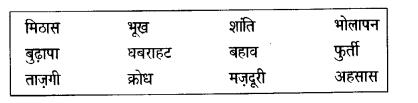 NCERT Solutions for Class 6 Hindi Vasant Chapter 11 जो देखकर भी नहीं देखते 3