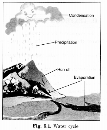 NCERT Solutions for Class 7 Social Science Geography Chapter 5 Water 1