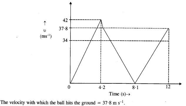 NCERT Solutions for Class 11 Physics Chapter 3 Motion in a Straight Line 10