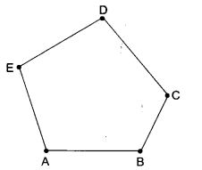 MCQ Questions for Class 6 Maths Chapter 4 Basic Geometrical Ideas with Answers 1