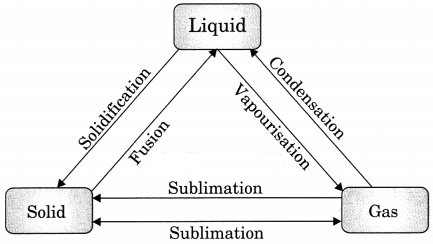 Matter in Our Surroundings Class 9 Extra Questions and Answers Science Chapter 1 img 1