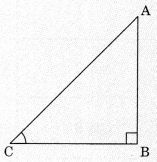 Introduction to Trigonometry Class 10 Notes Maths Chapter 8 1